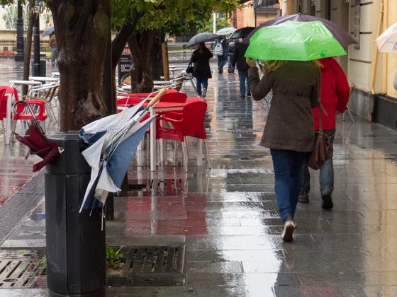 Deseando tirar los paraguas a la papelera